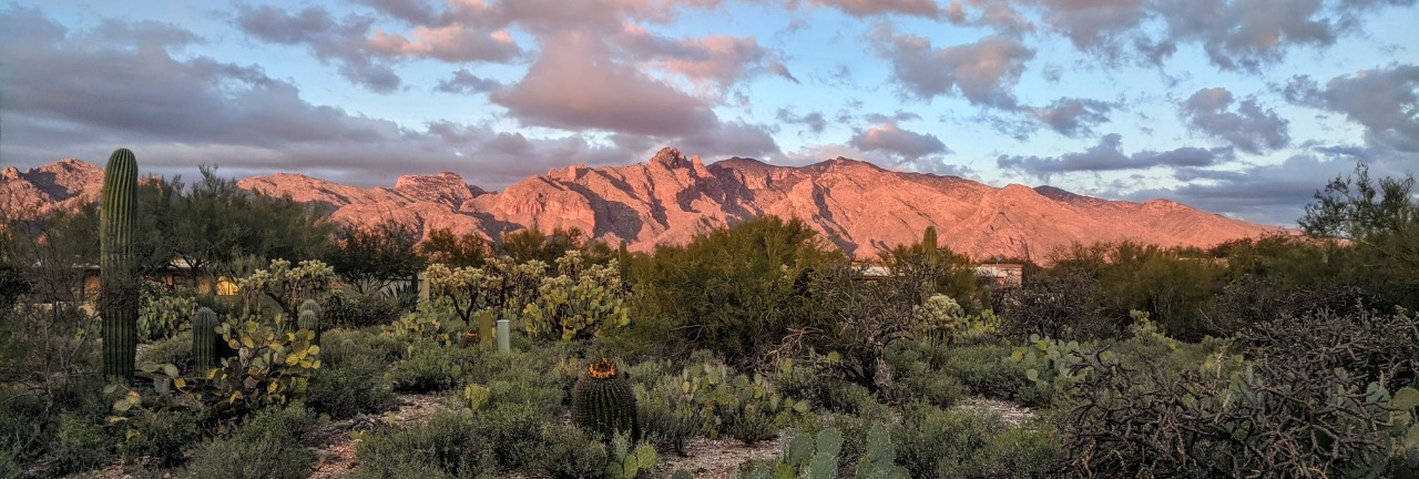 Tucson Foothills Real Estate Specialist